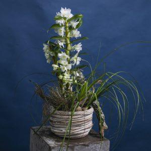 arreglos florales modernos