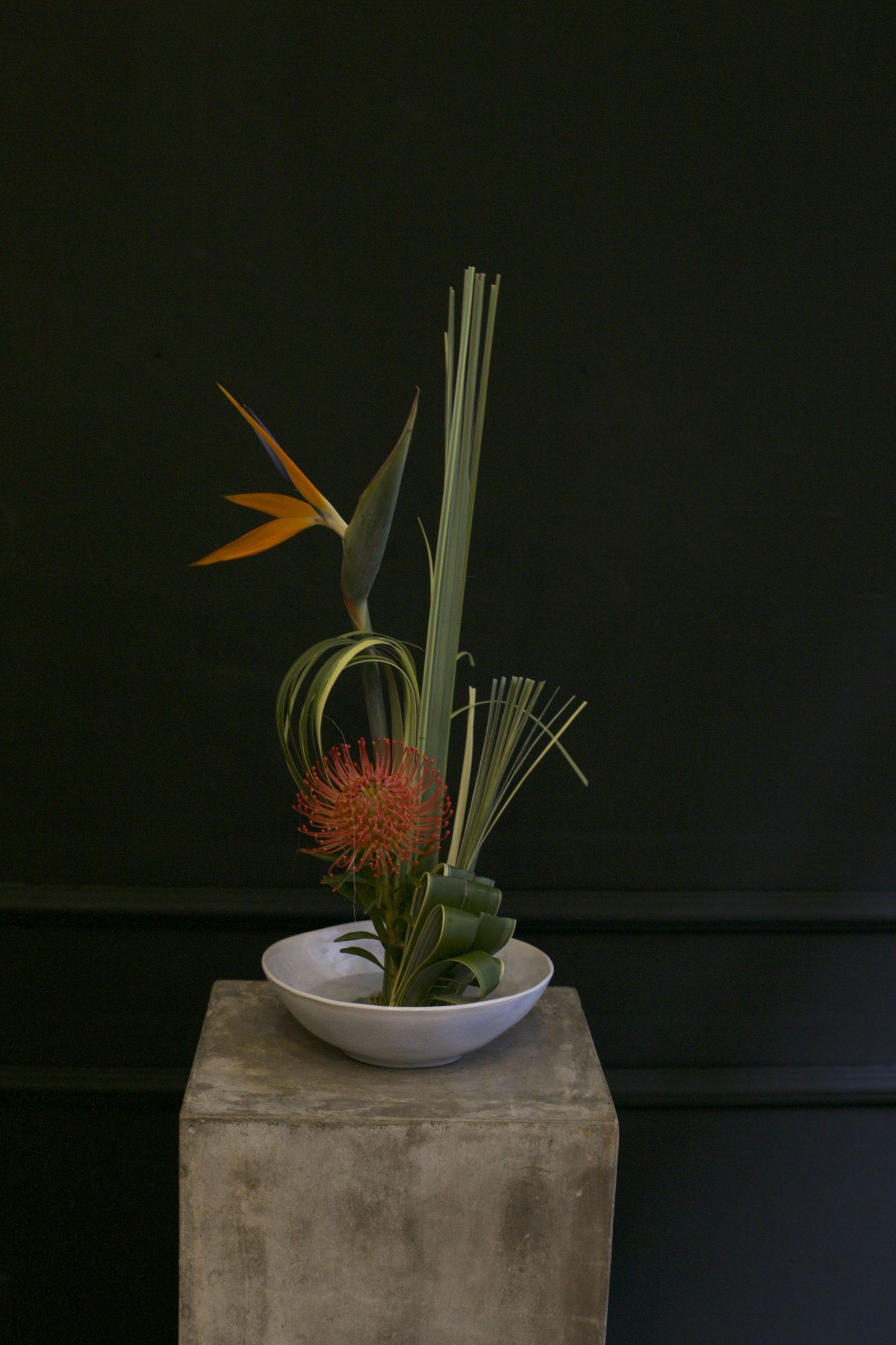 Composicion ikebana